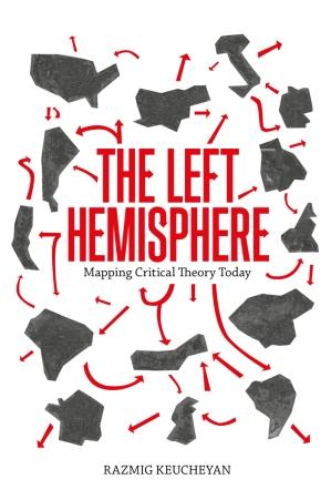 Verso_Left_Hemisphere